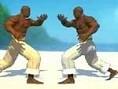 Capoeira Oyunu Oyna