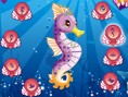 Fantastic Sea Horse