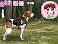 Beagle-Training